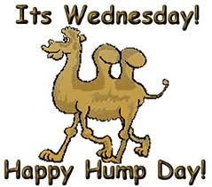 Happy Hump Day from BRL Test!