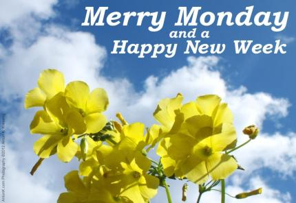 Merry-Monday-Happy-New-Week-greeting-yellow-flowers-blue-sky-clouds-photo-by-Anton-K (1)