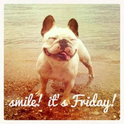 Happy Friday from BRL Test!