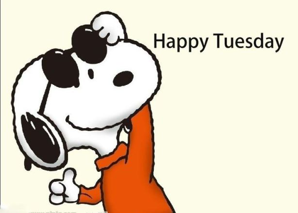 happy tuesday snoopy memes - photo #5