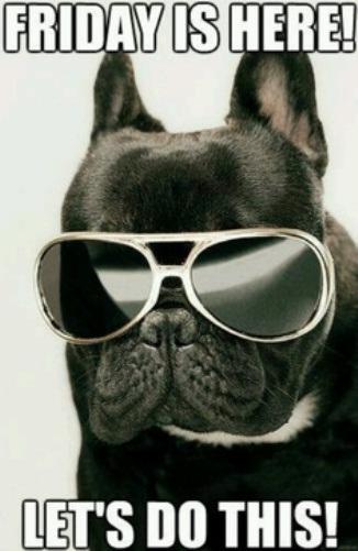 fridogglasses